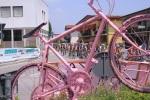 Giro Rosa 2015 (20)